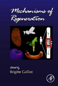 Current Topics in Developmental Biology, Vol.108- Mechanisms of Regeneration