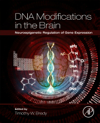 DNA Modifications in the Brain- Neuroepigenetic Regulation of Gene Expression