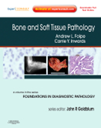 Bone & Soft Tissue Pathology with Expert Consult Online- Volume in the Foundations in Diagnostic PathologySeries