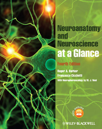 Neuroanatomy & Neuroscience at a Glance, 4th ed.