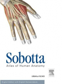 Sobotta, Atlas of Human Anatomy, 15th ed. with OnlineAccess.-Vol.1;General Anatomy & Musculoskeletal System,Vol.2;Internal Organs, Vol.3;Head Neck, & Neuroanatomy,In 3 vols + English Nomenclature