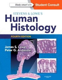 Stevens & Lowe's Human Histology, 4th ed.
