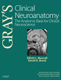 Gray's Clinical Neuroanatomy- Anatomic Basis for Clinical Neuroscience