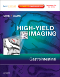 High-Yield Imaging: Gastrointestinal(High-Yield in Radiology Series)