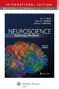 Neuroscience, 4th ed.(Int'l ed.)- Exploring the Brain