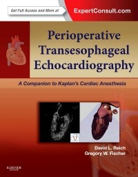 Perioperative Transesophageal Echocardiography(A Companion to Kaplan's Cardiac Anesthesia)