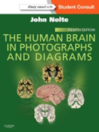 The Human Brain in Photographs & Diagrams, 4th ed.(With Student Consult Online Access)
