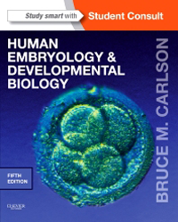 Human Embryology & Developmental Biology, 5th ed.