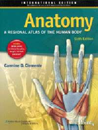 Anatomy, 6th ed., (Vital Sourse E-Book)- Regional Atlas of the Human Body