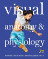 Visual Anatomy & Physiology, 2nd ed.