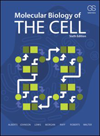 Molecular Biology of the Cell, 6th ed., paper ed.