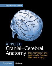 Applied Cranial-Cerebral Anatomy- Brain Architecture & Anatomically Oriented