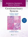 Differential Diagnosis in Surgical Pathology:Genitourinary System